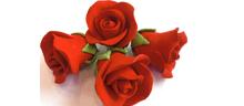 Rote Zucker-Rosen 18 Stück